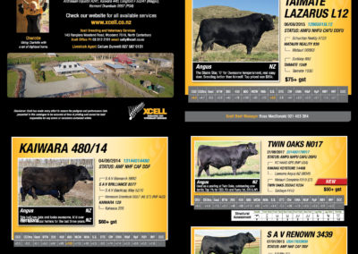 2019 Xcell Beef Catalogue