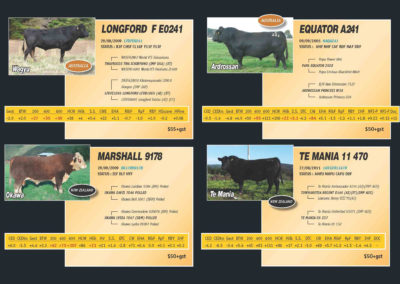 xcell-beef-catalogue-2016-web_page_2
